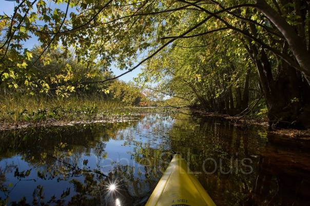 Kayaking in the Fall in Jemseg NB.