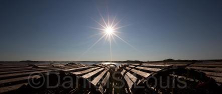 Lobster traps in Brackley Beach, PEI.