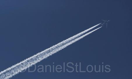 Late morning flight in the blue sky.