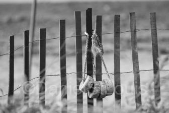 Fence in Grand Barachois, NB.