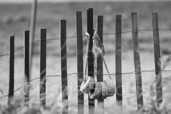 Fence in Grand Barachois, NB.