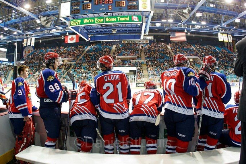 QMJHL sports photography during Moncton WIldcat playoff hockey