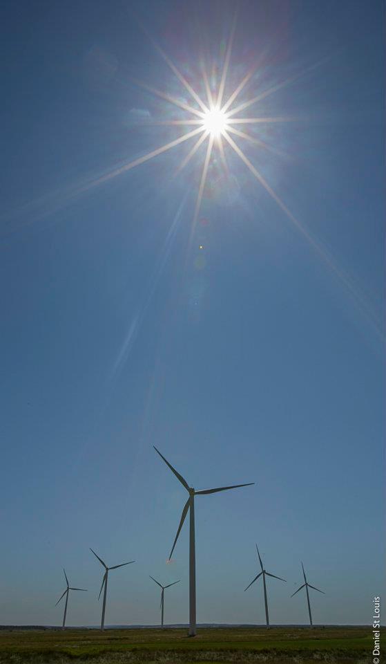 Blue sky on the marsh, Sackville NB