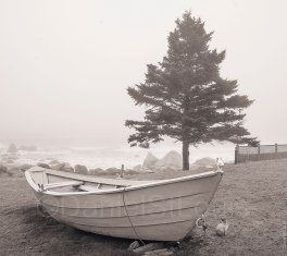 Boat on shore at White Point Beach.