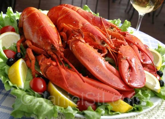East Coast Lobster, Moncton NB