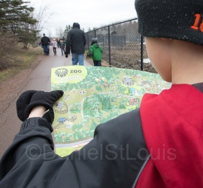 Navigating the Magnetic Hill Zoo